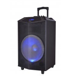 Altavoz Trolley Denver TSP-504